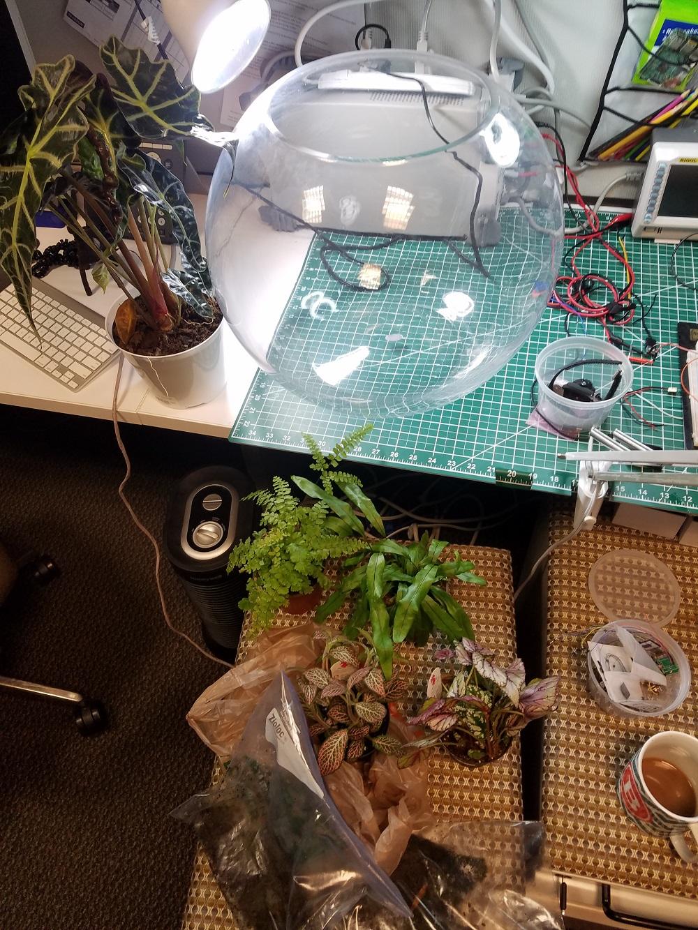 starting materials